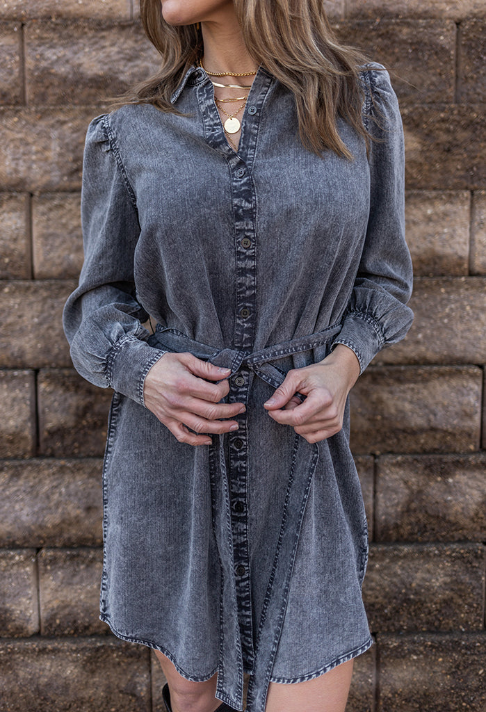 Rails Adele Denim Shirt Dress