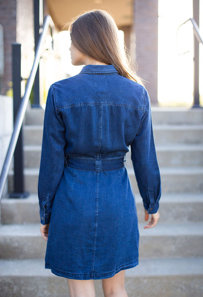 Rails Ripley Denim Dress