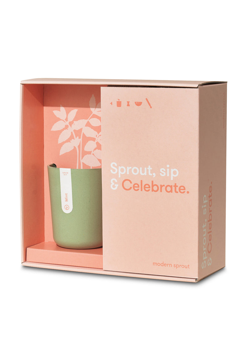 Modern Sprout Cocktail Gift Box