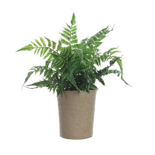 Faux Fern in Paper Pot