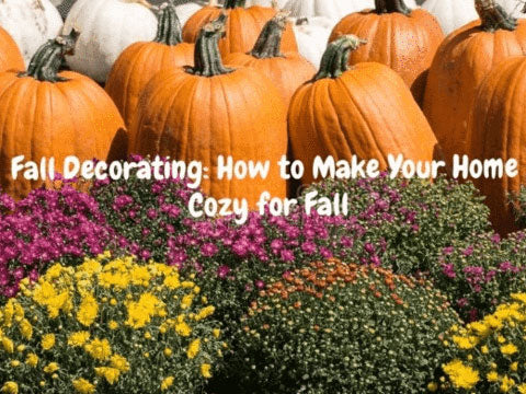 Top tips to make your home cozy for fall