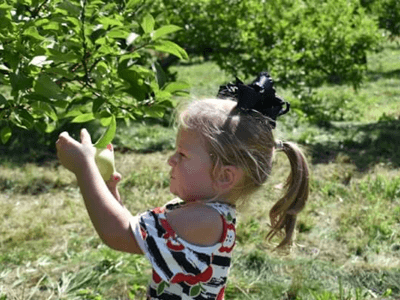 little girl at the apple orchard in cold shoulder apple dress by Sydney So Sweeet