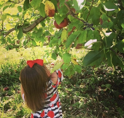 Girl picking apples in cold shoulder dress by Sydney So Sweet