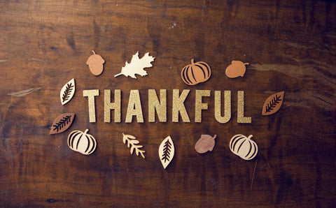 all themed thanksgiving paper cfutouts