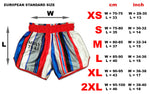 Muay Thai Shorts Beautiful Violence