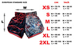 mixed martial arts shorts dragon master
