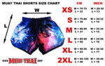 Muay Thai Shorts Universe Galaxy