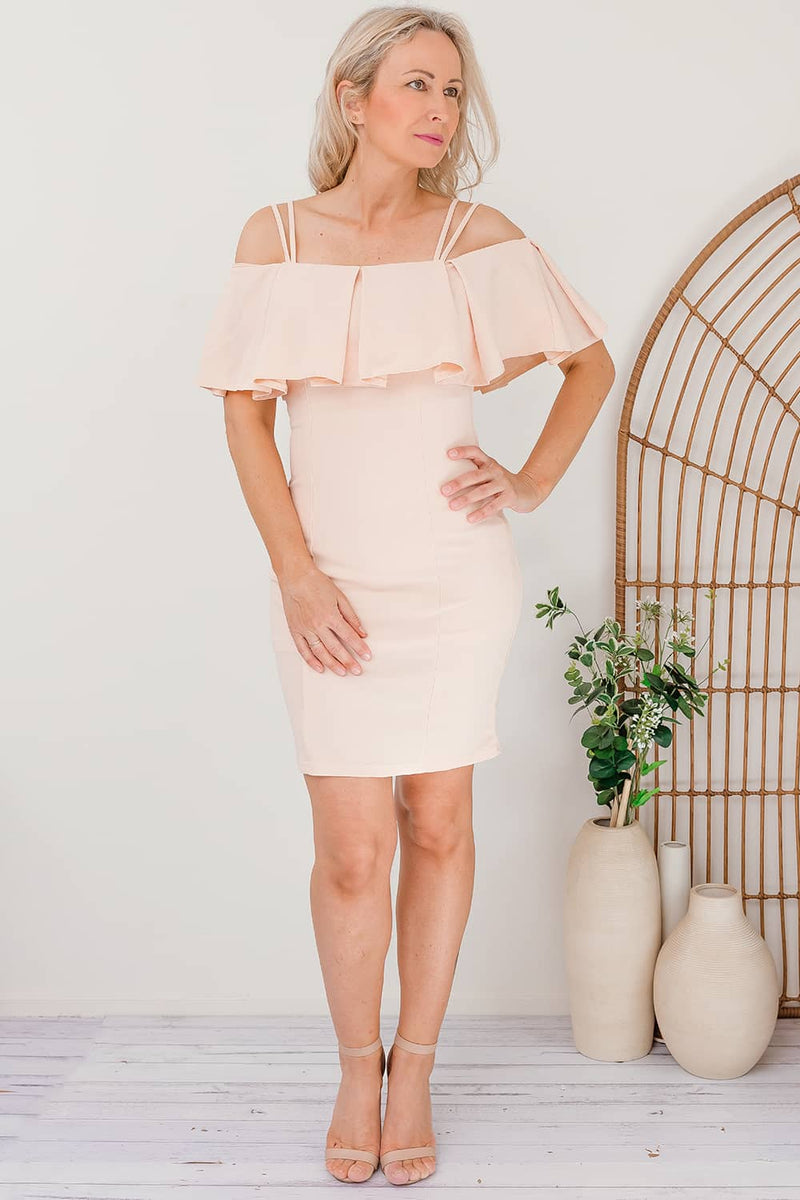 CHARESE DRESS- BLUSH - Two Sisters Instyle