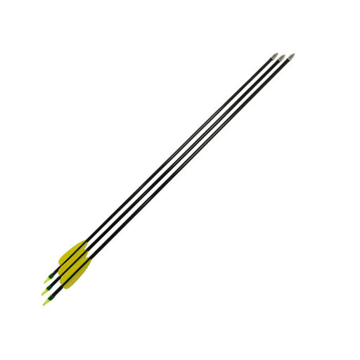 SAS 72 x Fiberglass Arrows for Archery Practise Recurve Bows - 6 Dozens