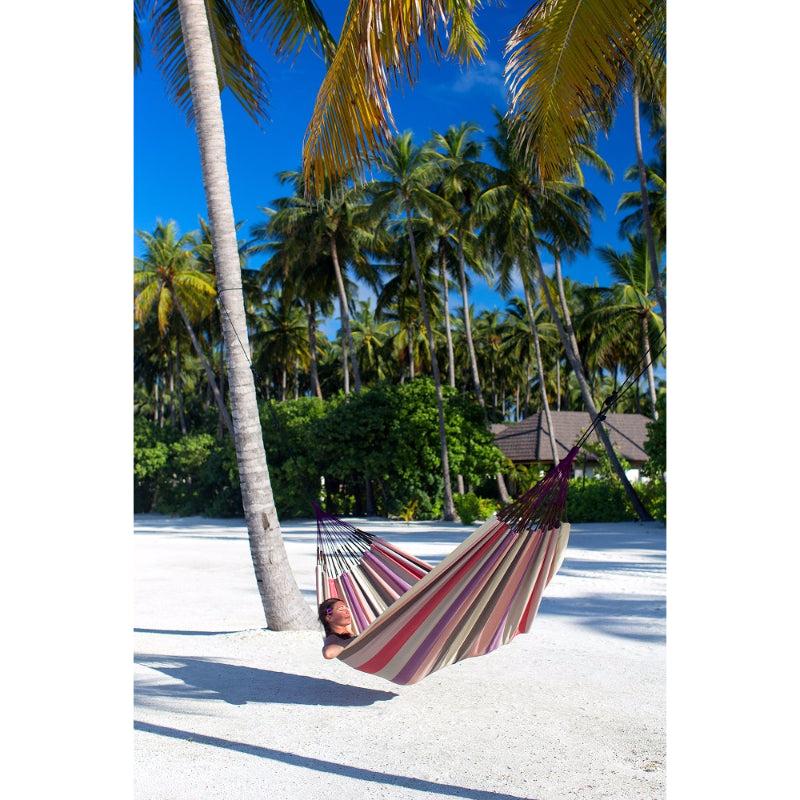 Tropical hammock