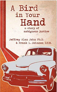 A Bird in Your Hand: A Story of Ambiguous Justice by Jeffrey Alan John