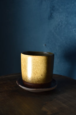 Down to Earth Cup + Saucer | Green
