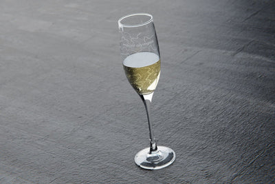Topography Maps Stemmed Champagne Flute Pair