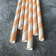 Classic Striped Paper Straws - Coral