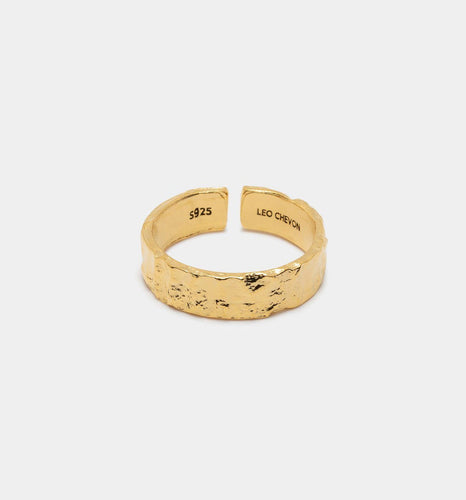 Amsterdam Ring - Leo Chevon (2425510559804)