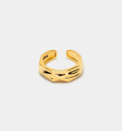 Cannes Ring - Leo Chevon (2418432376892)