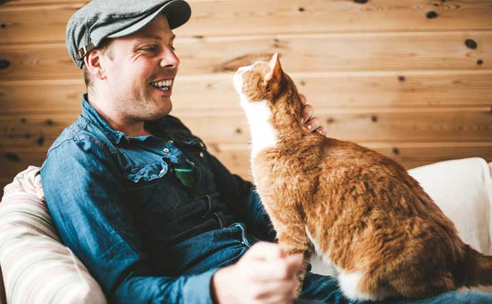 3 Tricks to correct a cat's undesirable behavior.