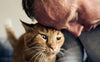 9 tips for living with older cats.