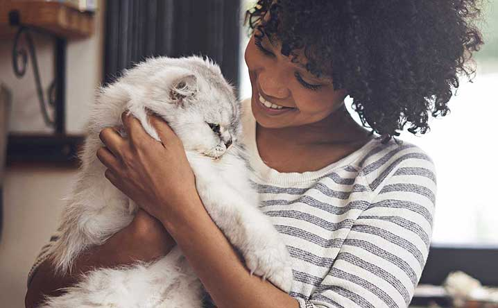 How can I help my cat be more affectionate?