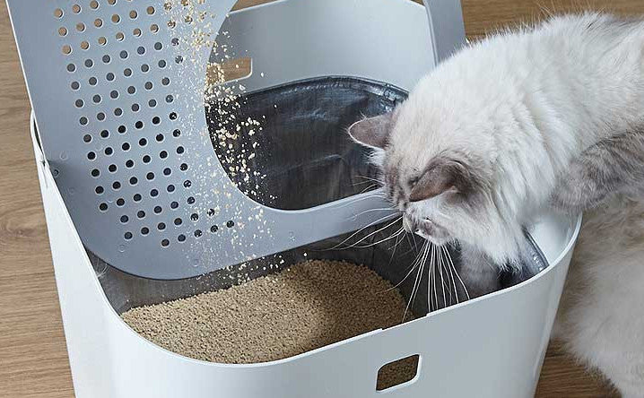 7 answers to your top litter box maintenance questions.
