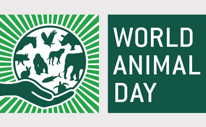 Speak up and act for our animal friends on World Animal Day.
