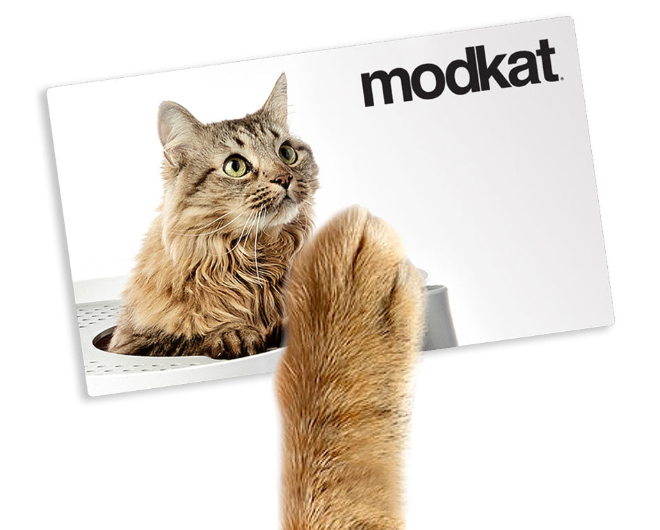 Modkat Digital Gift Card