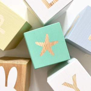 Shape Play Cube - Starfish