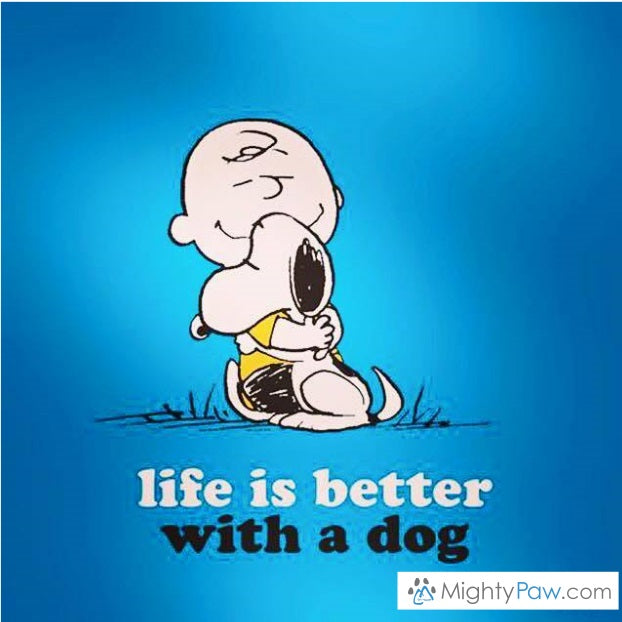 Life is Better… With a Dog