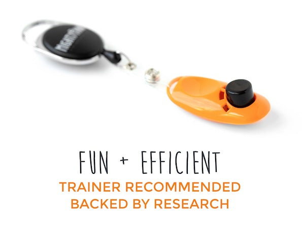 How to Use a Clicker for Dog Training