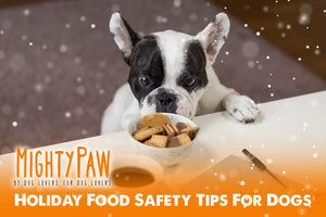 Holiday Food Safety Tips for Dogs + DIY Dog Food Topper Recipe