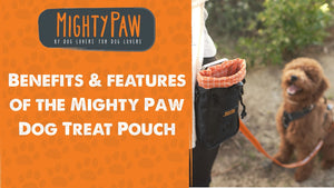 Benefits & Features Of The Mighty Paw Dog Treat Pouch