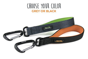 5 Uses for a Short Dog Leash or Leash Tab