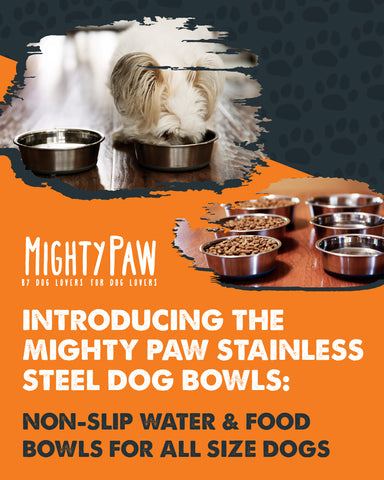 MightyPaw.com | Introducing the Mighty Paw Stainless Steel Dog Bowls
