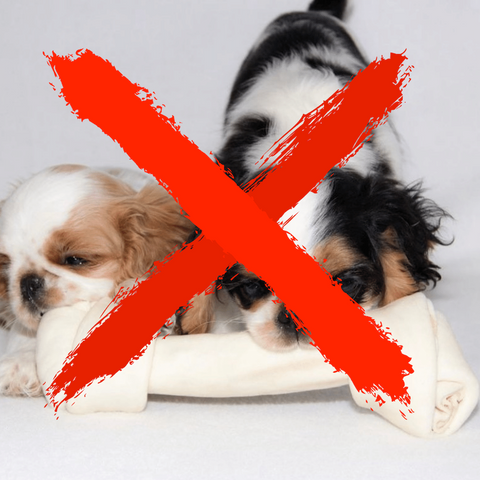 Bleached rawhide dog chews are really harmful and toxic for dogs