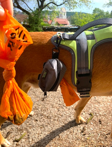 Close up of Mighty Paw Dog Poop Bag Holder and Dog Harness