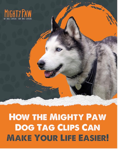 How the Mighty Paw Dog Tag Clips Can Make Your Life Easier