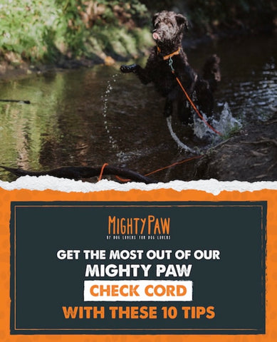 Get the most out of our Mighty Paw Check Cord with these 10 tips
