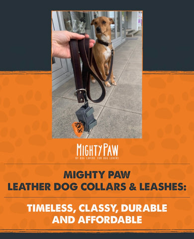 Mighty Paw Leather Dog Collars & Leashes