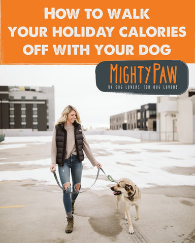 MightyPaw.com | How To Walk Your Holiday Calories Off With Your Dog