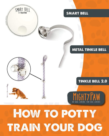 Mighty Paw | How to potty train your dog with bells
