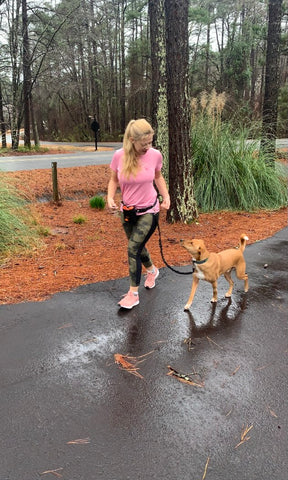 Walking dog on Mighty Paw's hands-free bungee dog leash set