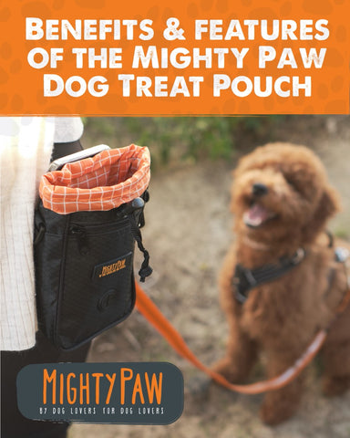 Mighty Paw | Benefits & Features Of The Mighty Paw Dog Treat Pouch