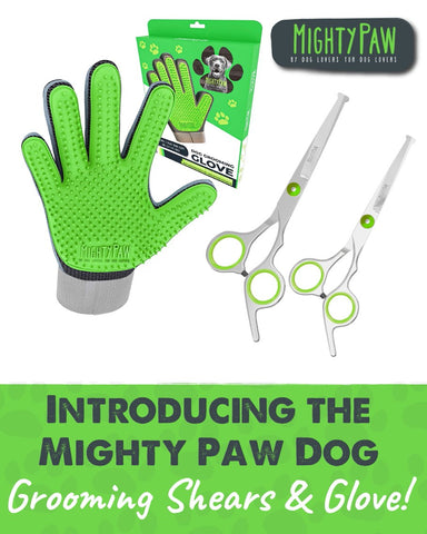 Introducing the Mighty Paw Dog Grooming Shears & Glove