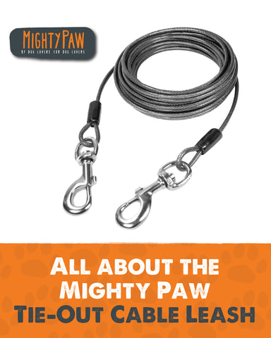 All about the Mighty Paw Tie-Out Cable Leash