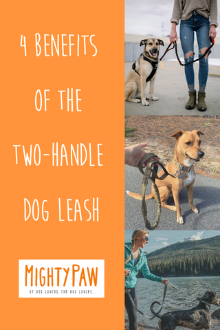4 Benefits Of The Mighty Paw Two-Handle Dog Leash