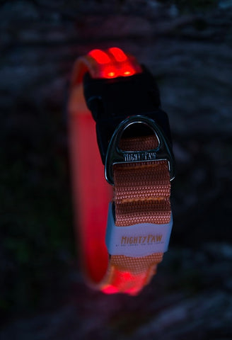 Mighty Paw Safety LED Dog Collar