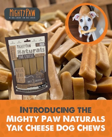 Introducing the Mighty Paw Naturals Yak Cheese Dog Chews