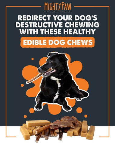 Mighty Paw | Redirect your dog's destructive chewing with these healthy edible dog chews