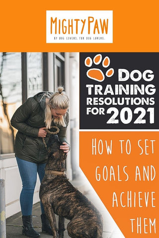 Mighty Paw Blog - Dog Training Resolutions for 2021: How To Set Goals And Achieve Them