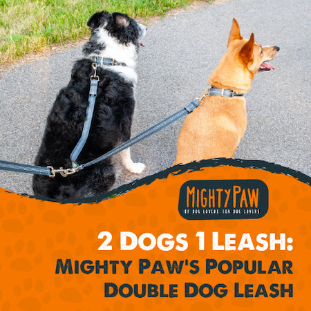 Mighty Paw's Popular Double Dog Leash - 2 Dogs 1 Leash